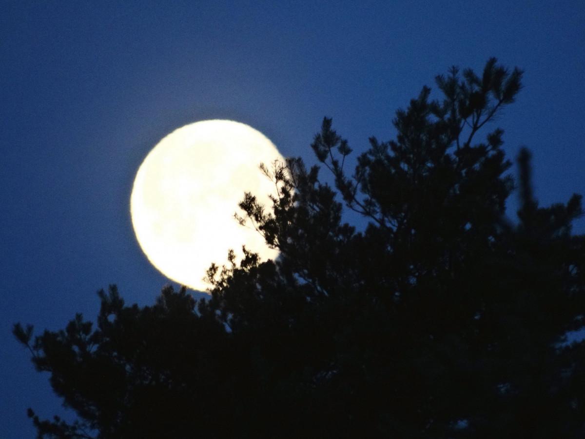 Monduntergang in Großkoschen