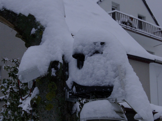 VP2_Schnee